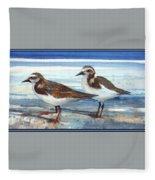 D50-awe116-rb-ruddy Turnstone 1 Roger Bansemer Fleece Blanket
