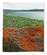 Da5869 Lichen Covered Rock Fleece Blanket