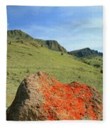 Da5872 Lichen Covered Rock Below Abert Rim Fleece Blanket