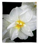 Daffodil Diagonal Fleece Blanket