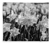 Daffodil Glow Monochrome By Kaye Menner Fleece Blanket