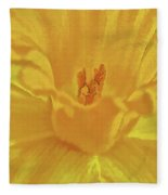 Daffodil In Spring Fleece Blanket