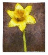 Daffodil Pencil Fleece Blanket