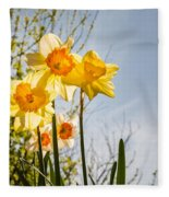 Daffodils Backlit Fleece Blanket
