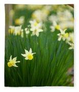 Daffodils In A Bunch Fleece Blanket