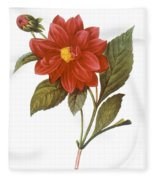 Dahlia (dahlia Pinnata) Fleece Blanket