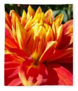 Dahlia Florals Orange Dahlia Flower Art Prints Canvas Fleece Blanket