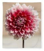 Dahlia- Pink And White Fleece Blanket