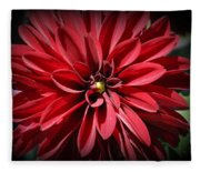 Dahlia Radiant In Red Fleece Blanket