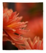 Dahlia Rainshower Fleece Blanket
