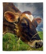 Dairy Cow Eating Grass Fleece Blanket