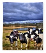 Dairy Heifer Groupies Future Chick-fil-a Starrs Fleece Blanket