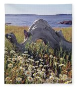 136236-daisies And Driftwood  Fleece Blanket