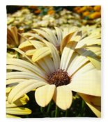 Daisies Flowers Landscape Art Prints Daisy Floral Baslee Troutman Fleece Blanket