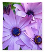 Daisies Lavender Purple Daisy Flowers Baslee Troutman Fleece Blanket