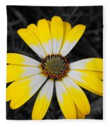 Daisy Crown Fleece Blanket