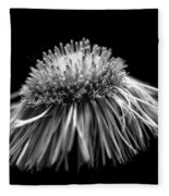 Daisy Flea Bane 0619c Fleece Blanket