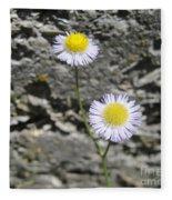Daisy Fleabane Flowers Fleece Blanket