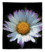 Daisy Under Sun Fleece Blanket