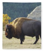 Dakota Badlands Majesty Fleece Blanket