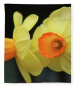 Dallas Daffodils 07 Fleece Blanket