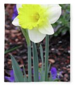 Dallas Daffodils 20 Fleece Blanket