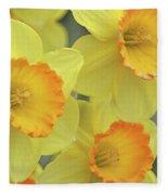 Dallas Daffodils 24 Fleece Blanket