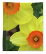 Dallas Daffodils 36 Fleece Blanket