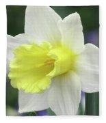 Dallas Daffodils 55 Fleece Blanket