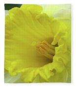 Dallas Daffodils 73 Fleece Blanket