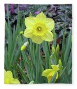 Dallas Daffodils 83 Fleece Blanket