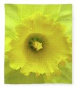 Dallas Daffodils 87 Fleece Blanket