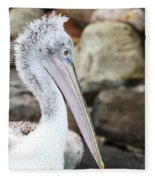Dalmatian Pelican Fleece Blanket
