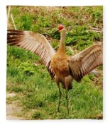 Dancing Crane Fleece Blanket