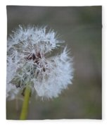 Dandelion Frost Fleece Blanket