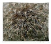 Dandelion Head Fleece Blanket
