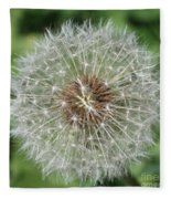 Dandelion Macro Fleece Blanket