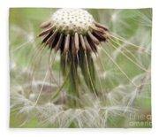 Dandelion Wish 8 Fleece Blanket