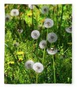 Dandelions On The Maryland Appalachian Trail Fleece Blanket