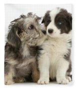 Dandy Dinmont Terrier And Border Collie Fleece Blanket