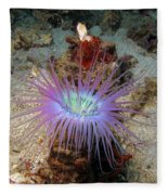 Dangerous Underwater Flower Fleece Blanket