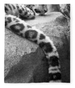 Dangling And Dozing In Black And White Fleece Blanket