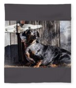 Dapple Dachshund Fleece Blanket