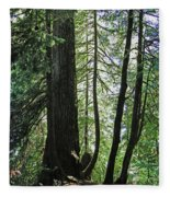 Dark Forest  Fleece Blanket