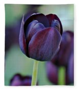Dark Purple Tulip Fleece Blanket