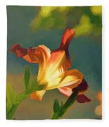 Dark Red Day Lily With Sun Shining Through I Abstract I Fleece Blanket