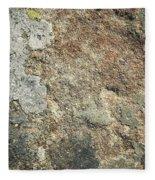 Dark Sandstone Surface With Moss Fleece Blanket