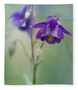Dark Violet Columbine Flowers Fleece Blanket
