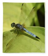 Dasher In My Pond Fleece Blanket