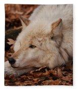 Day Dreamer Fleece Blanket